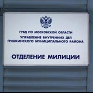 Отделения полиции Орды